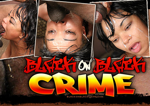 Black On Black Crime Destroys Cassino